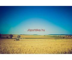 Biogazdálkodó + Gazda OKJ-s tanfolyam Budapesten