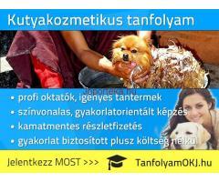 Kutyakozmetikus OKJ-s tanfolyam Budapesten