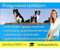Állatgondozó OKJ-s tanfolyam Budapesten