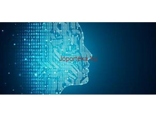 Üzleti mesterséges intelligencia, Egyedi szoftverfejlesztés