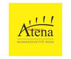 ATENA - piacvezető